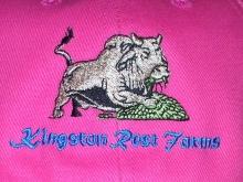 kingstone2